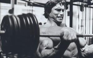 Основы тренировки